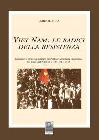 vietnam le radici della resistenza